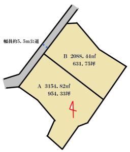 大巌寺町分割区画図